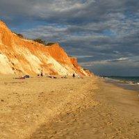 Охровый пляж... :: Elena Ророva