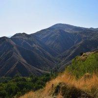 Армения... восхитительный пейзаж в ущелье Гарни. :: Galina Leskova
