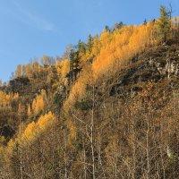 Осень в горах :: Владимир Гришин