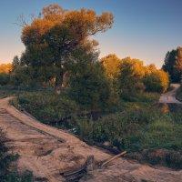 Два пути ... :: Roman Lunin