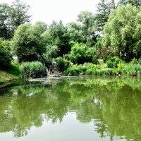 Изумрудный пруд :: Наталия Каминская