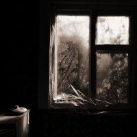 У осеннего окна. :: Эника.