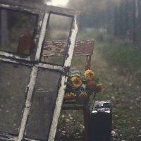 Тихо шепчет октябрь: «Всё вернётся, вернётся…» :: Liliya