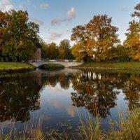 Осень в Павловском парке. :: Олег Бабурин