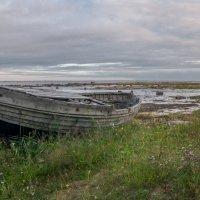 Белое море. :: Наталия Владимирова