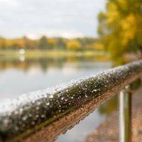 Осень. Нотка импрессионизма... :: Александр Орлов