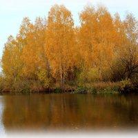 Осень - книга золотая... :: Нэля Лысенко