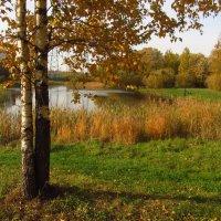 Полагаю, Золотая осень :: Андрей Лукьянов