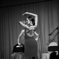 Flamenco energy :: Александр Липецкий