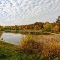 Осенние краски :: Олег Пученков