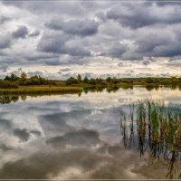 В Подмосковье на исходе сентября 7 :: Андрей Дворников