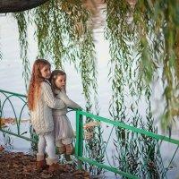 Осень в Королеве. :: Надежда Антонова