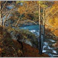 Золотая осень  в Тызыльском ущелье :: Александр Богатырёв