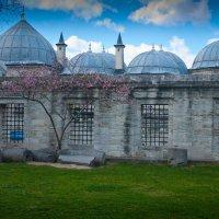 Весна в Истанбуле :: Андрей ТOMА©