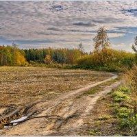 Полевые дороги :: Татьяна repbyf49 Кузина