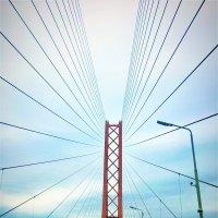 Мост через р.Обь. :: Алла ZALLA