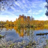 Осень в Алмазово :: Сергей Дружаев