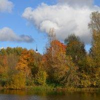 Великие Луки. Осенний пейзаж... :: Владимир Павлов