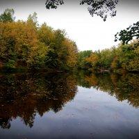 Осенние отражения. :: Антонина Гугаева