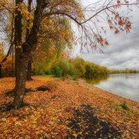 Октябрь — месяц грусти и простуд :: Наталья Лакомова