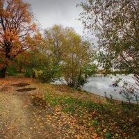 Люблю октябрь, угрюмый месяц, :: Наталья Лакомова