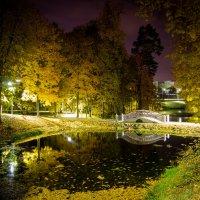 Белкинский парк ночью :: Евгений Лебедь