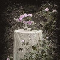 В саду :: Ольга Бекетова
