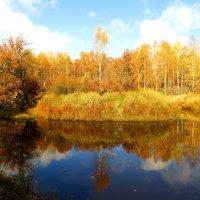 Золото речного берега :: Андрей Снегерёв