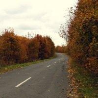 осень :: Анцупов Сергей