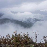 Горные вершины. Перевал в Сванетии :: Лариса Батурова