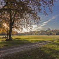 Осень на Андреевском лугу :: Евгений