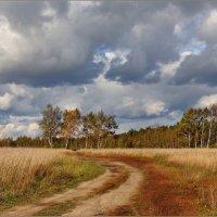 Осень :: Татьяна repbyf49 Кузина