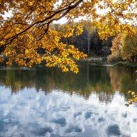 Карамельные листья :: Виктор
