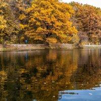 Озеро на Щёлковском хуторе :: Виктор