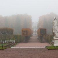 Утро туманное (Царское село) :: Valentina - M