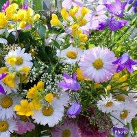 Летние цветы :: Ольга Бекетова