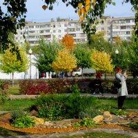 Солнечным октябрьским днём :: Самохвалова Зинаида