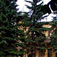 Около военного санатория :: Евгений БРИГ и невич