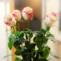 Розы. :: Андрей Козов