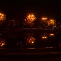 в спящем фонтане ночная осень... :: Галина R...