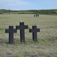На братских могилах не ставят крестов,сюда мол ходят люди покрепче...Пели мы... :: Андрей Хлопонин