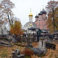 Донской монастырь. :: Oleg4618 Шутченко