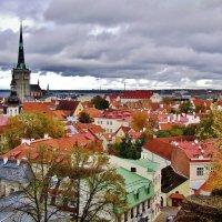 Таллин в пасмурный день октября :: Aida10