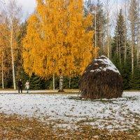 Зима уже близко.... :: ирина )))