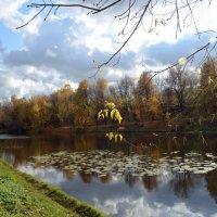Москва. Серебряно-Виноградный пруд. :: Oleg4618 Шутченко