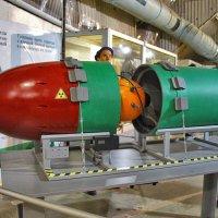 Торпеда с ядерной боеголовкой :: Nina Karyuk