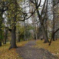 Осень в старом парке :: Валерий Пегушев