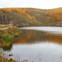 осеннее озеро :: Ольга Мутовина