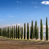 Toscana :: Konstantin Rohn
