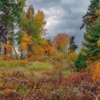 Autumn in Saulkrasti :: Arturs Ancans
